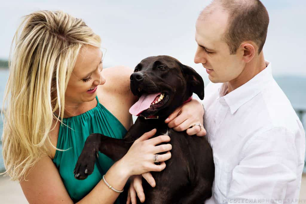Boston Castle Island summer engagement session with rescue dog
