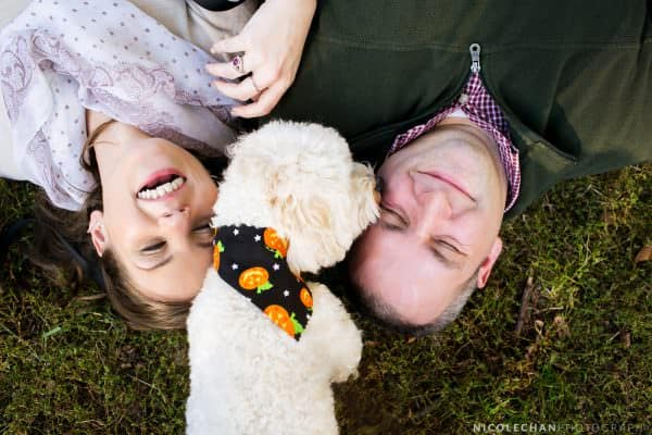 Brattle Bookstore book-themed Boston engagement session in Boston Commons