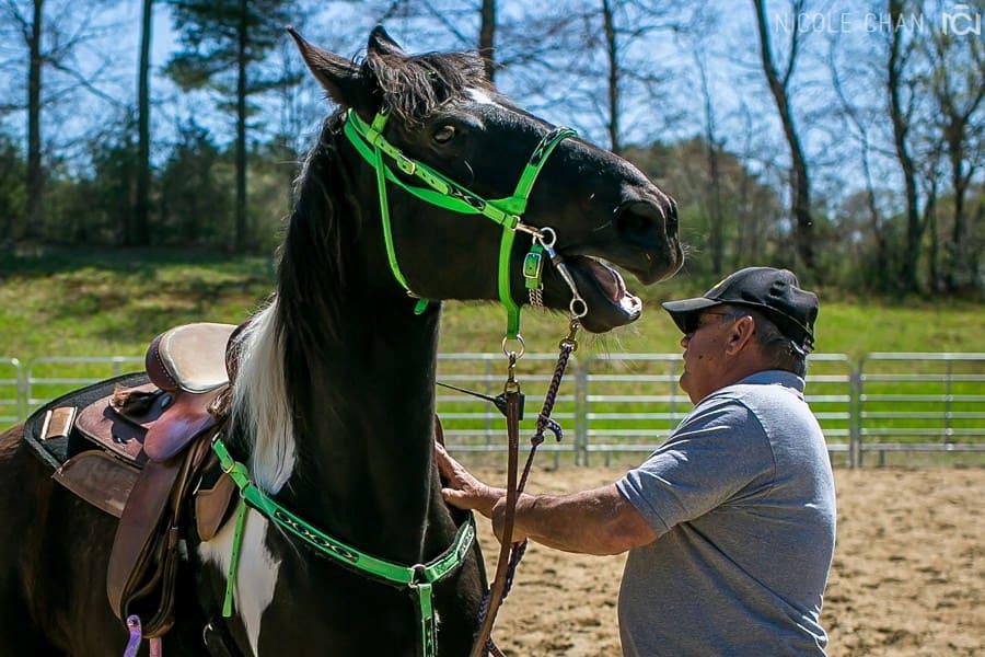 de-spook-horse-clinic_0035