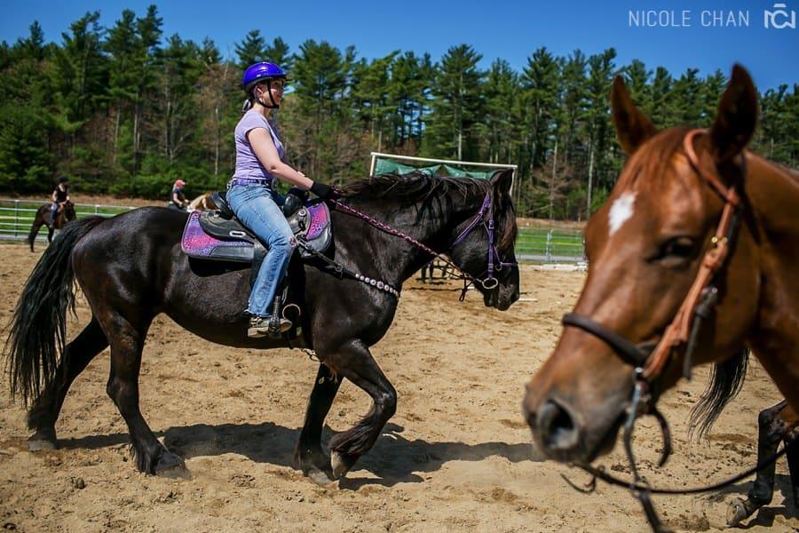 de-spook-horse-clinic_0036