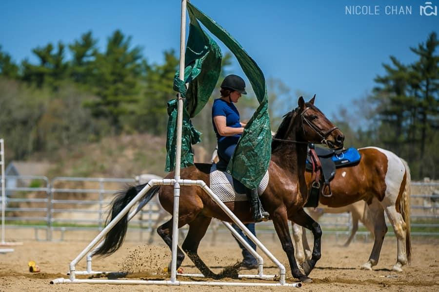 de-spook-horse-clinic_0037