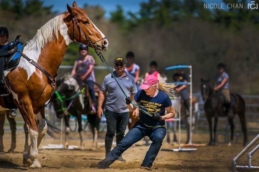 de-spook-horse-clinic_0038