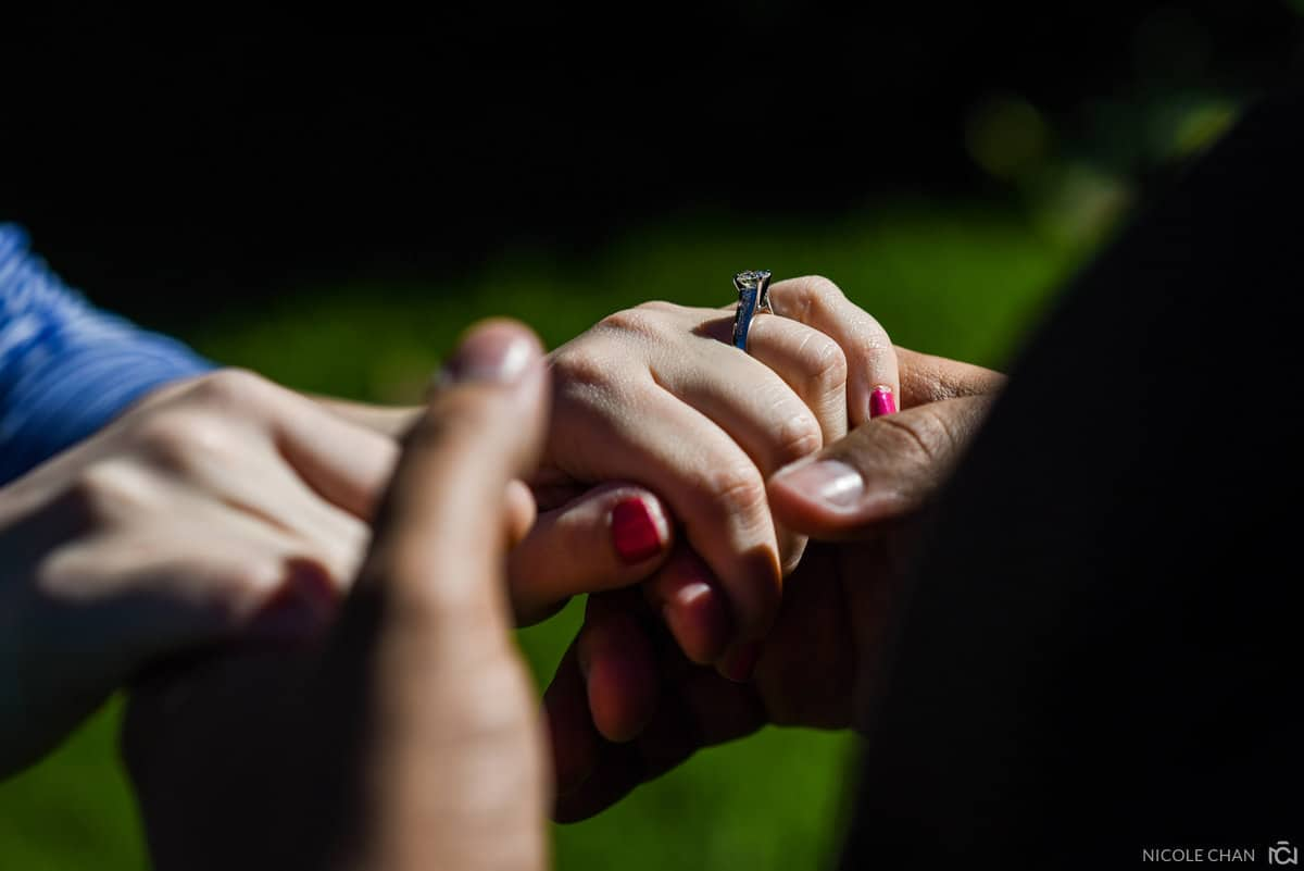 nicole-chan-Brian-proposal-arnold-arboretum-039