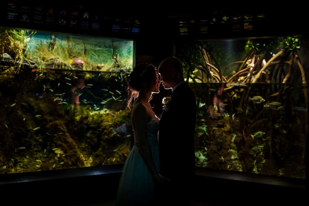 Boston New England Aquarium wedding