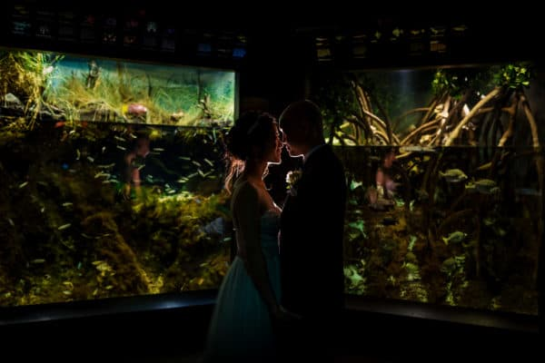 New England Aquarium wedding photos