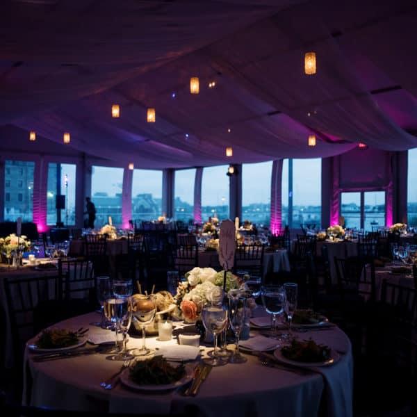 New England Aquarium wedding photos