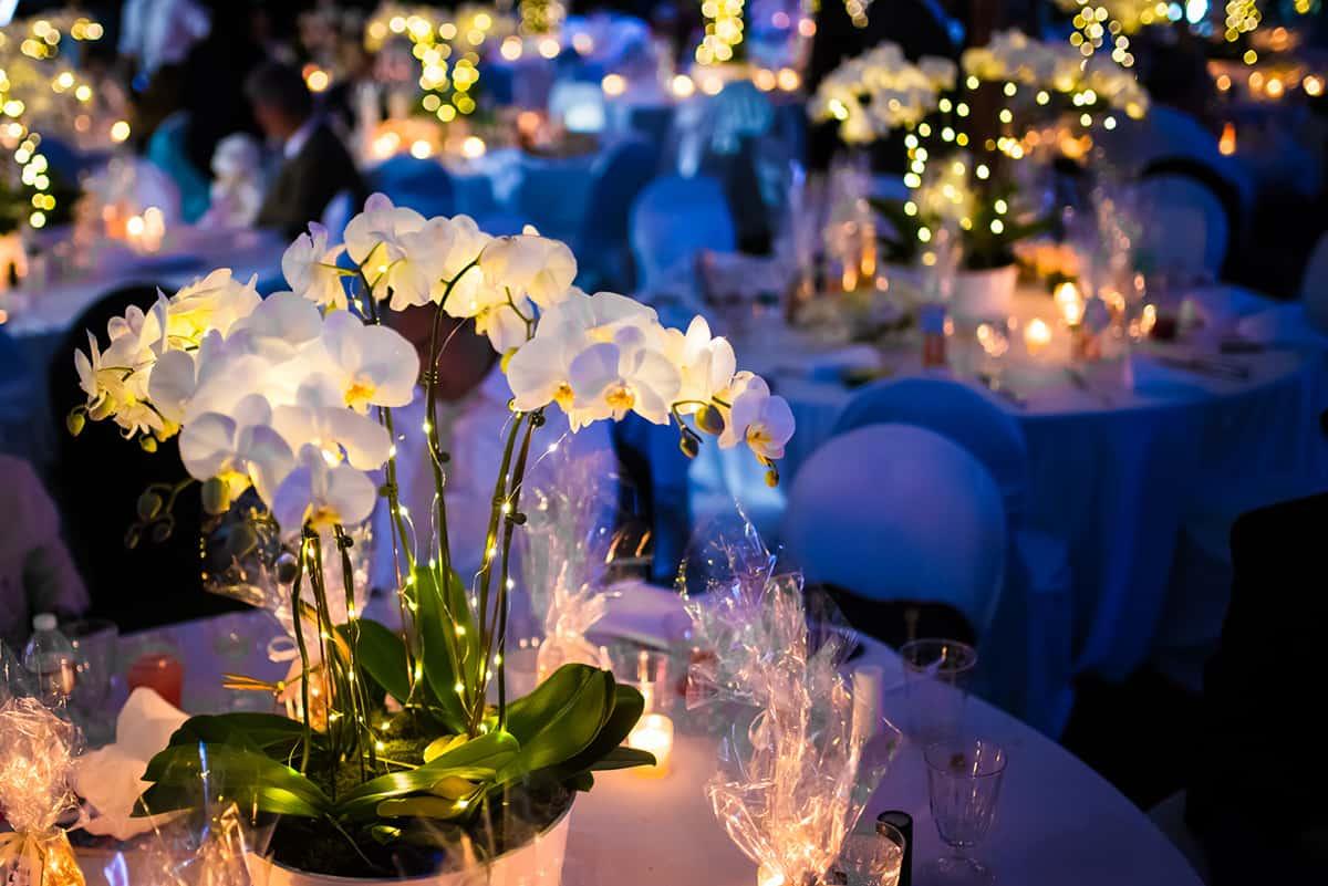 zofia-joe-new-hampshire-wedding-photographer-nicole-chan-photography-056