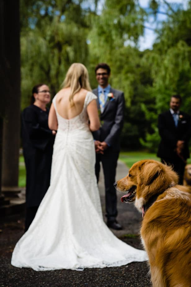 Madeline-Adam-Larz-Anderson-Park-Wedding-Photos-Brookline-MA-Wedding-Photographer-Nicole-Chan-Photography-0008-1